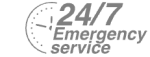 24/7 Emergency Service Pest Control in Mill Hill, NW7. Call Now! 020 8166 9746