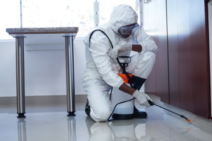 Emergency Pest Control, Pest Control in Mill Hill, NW7. Call Now 020 8166 9746